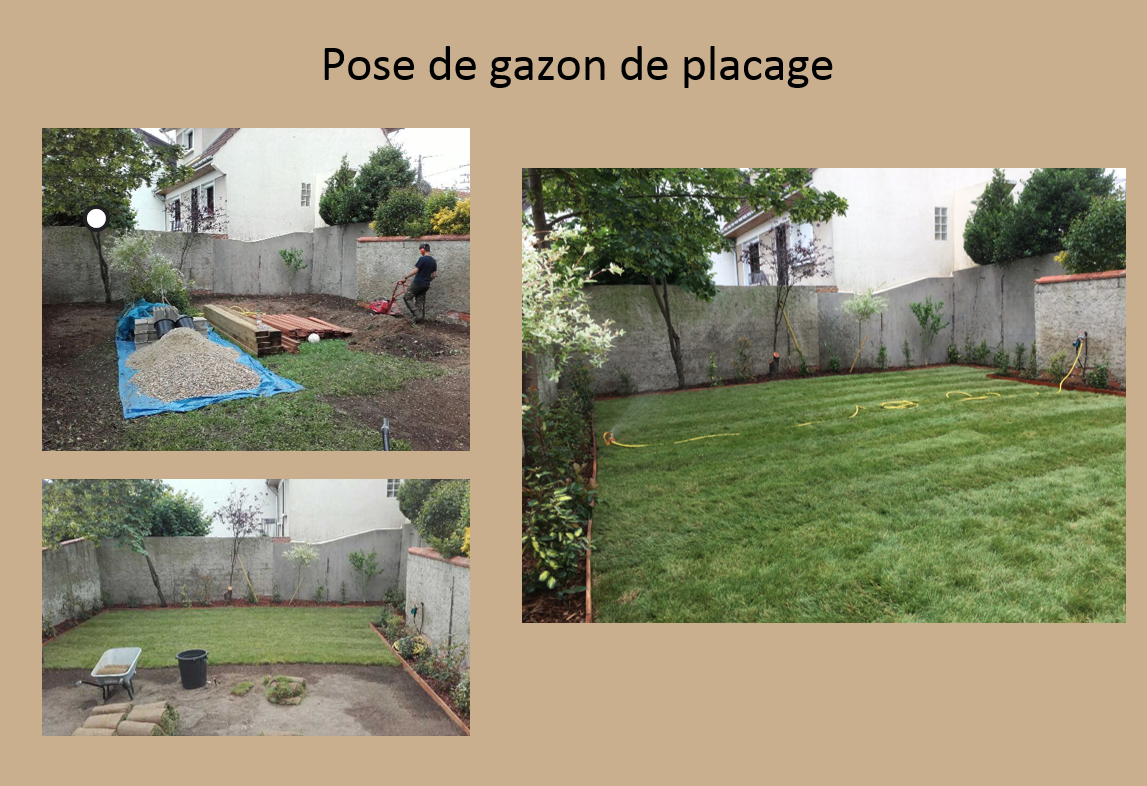 Gazon de placage