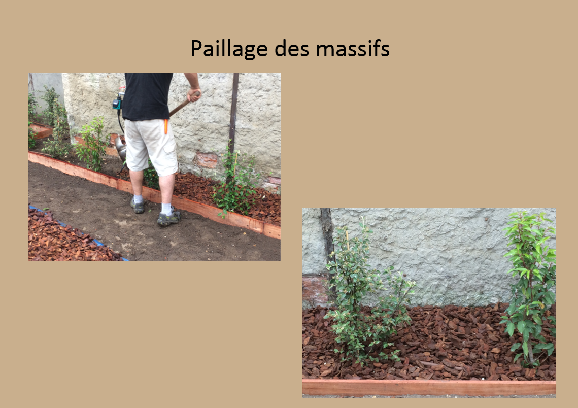 Paillage de massifs